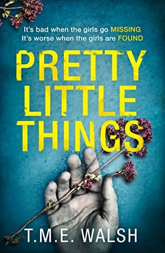 Pretty Little Things by T M E Walsh, front cover, holiday reading