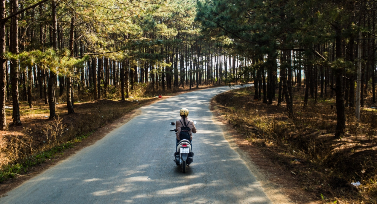 Vietnam, road through the forests of Dalat, rider on a motorbike
