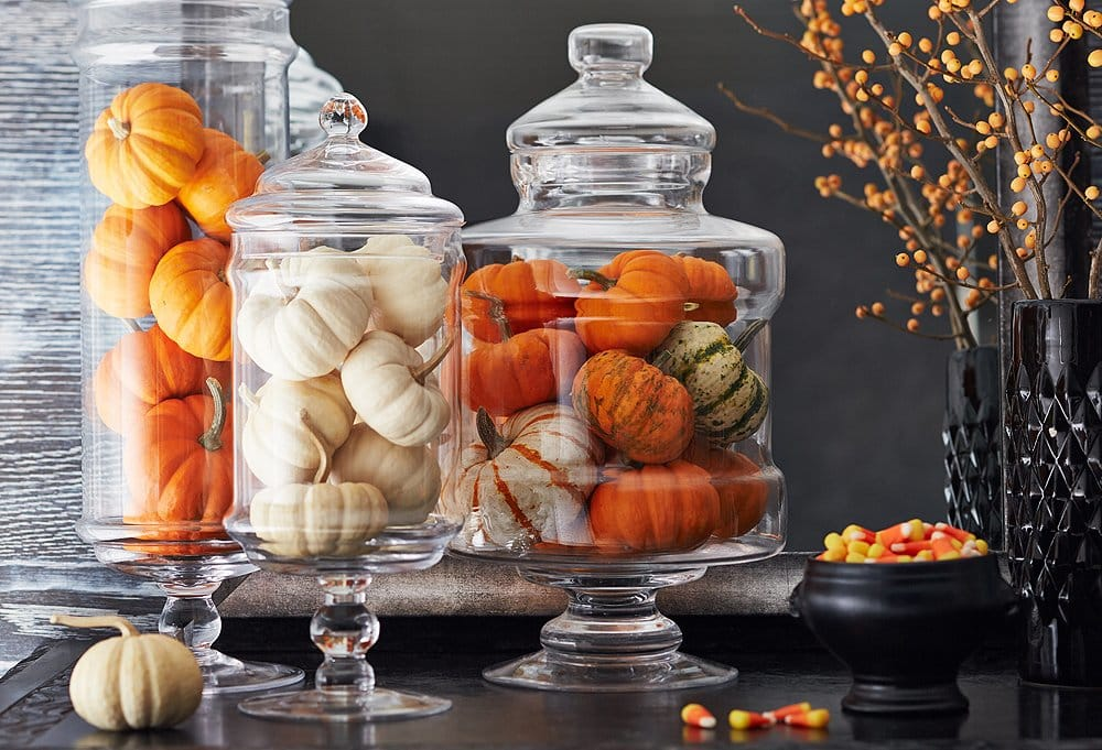 Halloween decor, three glass jars filled with tiny, coloured pumpkins