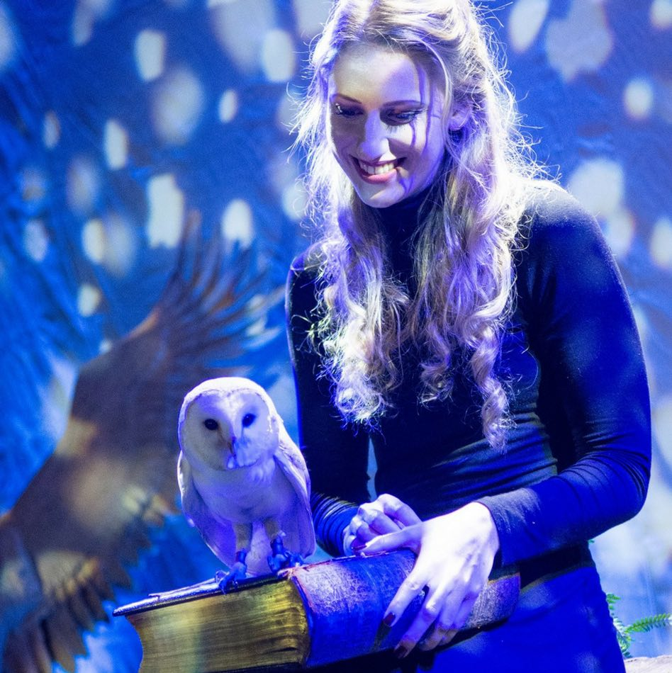 Magical Christmas Places, Longleat, owls