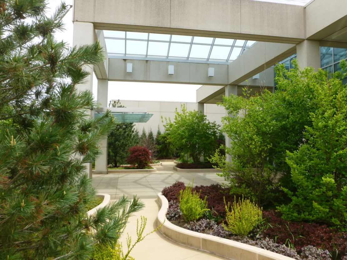 garden trends, curves, curved pathway with plants, trees, large portico entrance