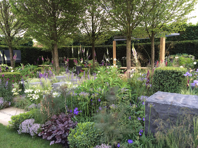 outdoor retreat, garden from Chelsea Flower Show, blue, purple and white